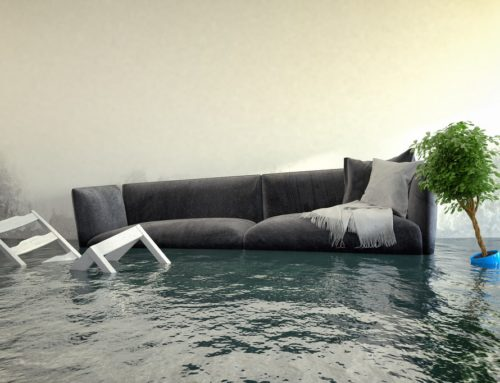 Why You Should Invest in Southwest Florida Flood Insurance